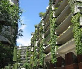Urbanización Sustentable; Cambios Ambientales Progresistas